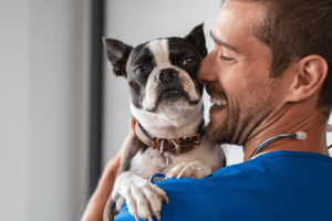 Wellness Care | Buckwalter Veterinary Clinic Bluffton SC