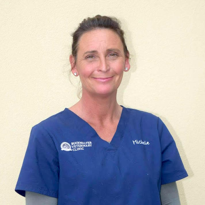 Michele Little | Buckwalter Veterinary Clinic Bluffton SC